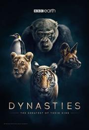 Dynasties 2018