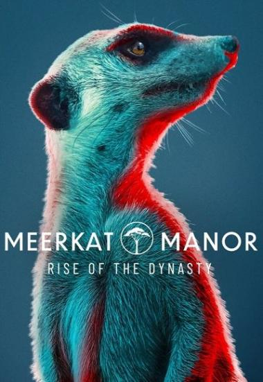 Meerkat Manor: Rise of the Dynasty 2021
