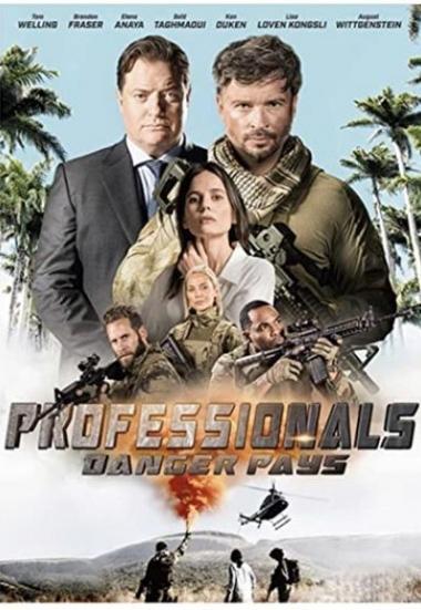 Professionals 2020
