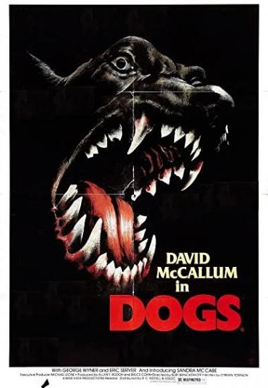 Dogs 1976
