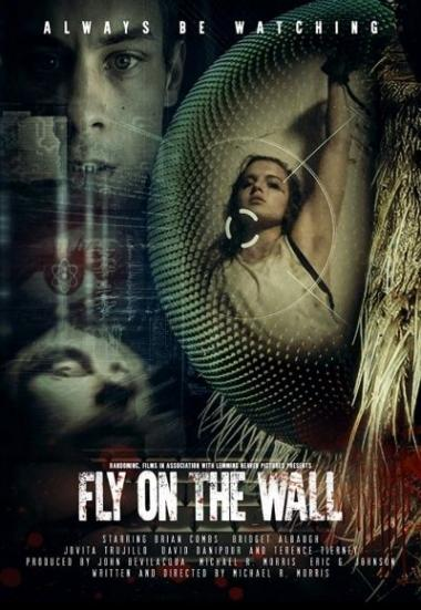 Fly on the Wall 2018