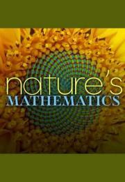 Nature's Mathematics 2017