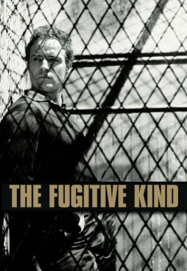 The Fugitive Kind 1960