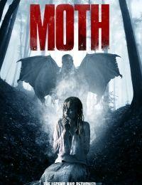 Moth 2016