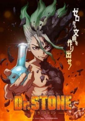 Dr. STONE (Dub)