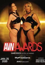 Best in Sex: 2020 AVN Awards 2020