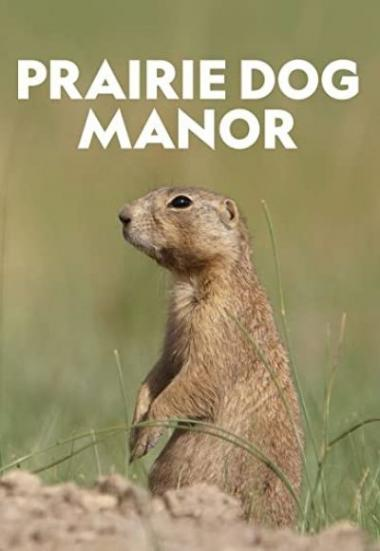 Prairie Dog Manor 2019