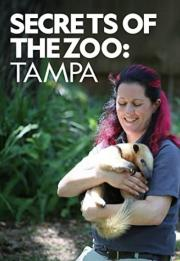 Secrets of the Zoo: Tampa 2020