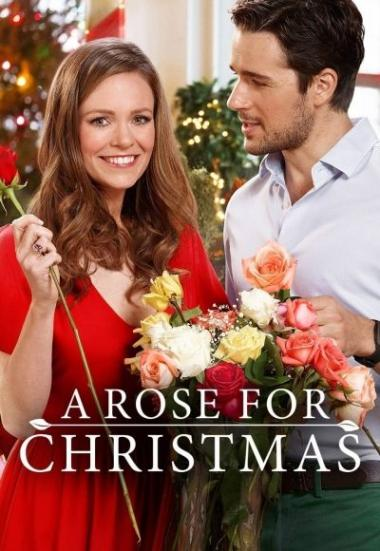 A Rose for Christmas 2017