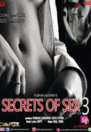 SOS: Secrets Of Sex Chapter 3 2014