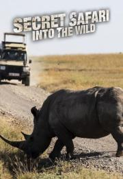 Secret Safari: Into the Wild 2021