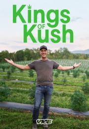 Kings of Kush 2021