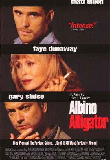 Albino Alligator 1996
