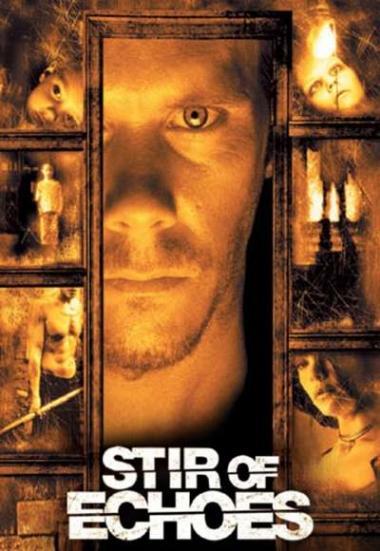 Stir of Echoes 1999
