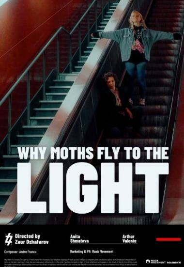 Why Moths Fly to the Light? 2021