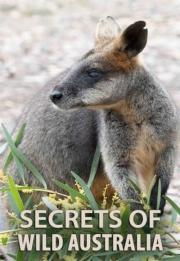 Secrets of Wild Australia 2016