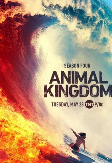 Animal Kingdom 2016