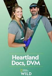 Heartland Docs, DVM 2020