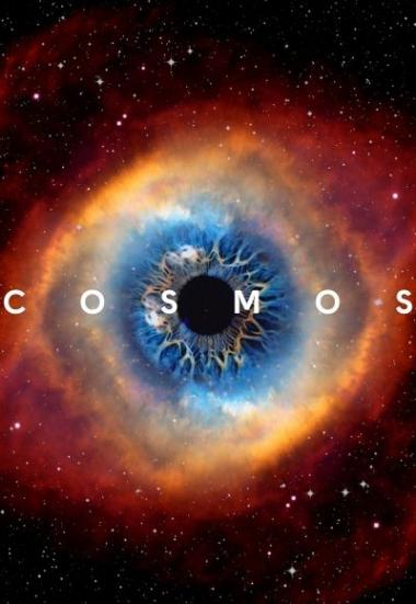 Cosmos: A Spacetime Odyssey 2014