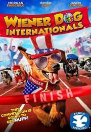 Wiener Dog Internationals 2017