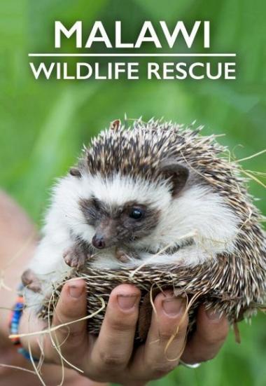 Malawi Wildlife Rescue 2019