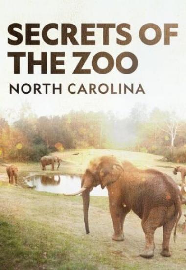 Secrets of the Zoo: North Carolina 2020