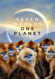 Seven Worlds One Planet 2019