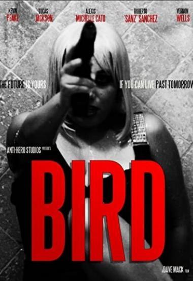 Bird 2020