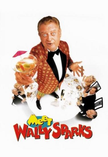 Meet Wally Sparks 1997