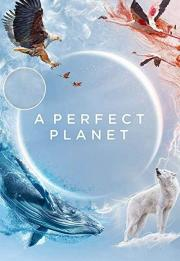 A Perfect Planet 2021