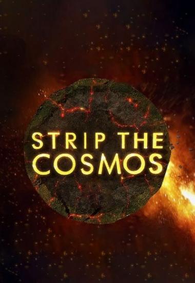 Strip the Cosmos 2014