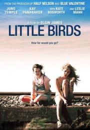 Little Birds 2011