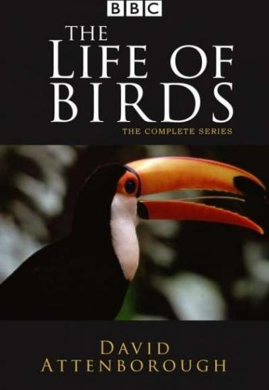The Life of Birds 1998