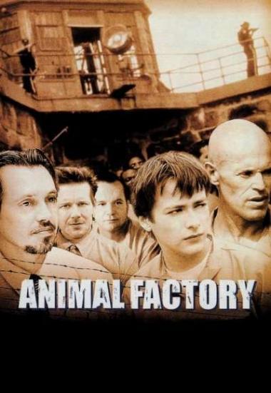 Animal Factory 2000