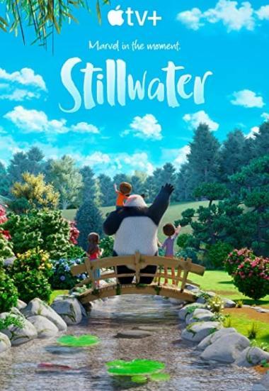 Stillwater 2020