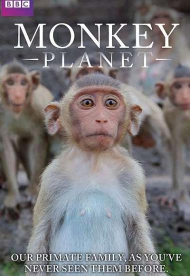 Monkey Planet 2014