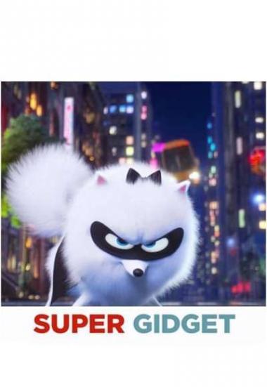 Super Gidget 2019