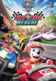 Paw Patrol: Ready, Race, Rescue! 2019