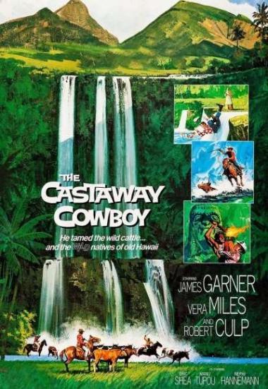 The Castaway Cowboy 1974
