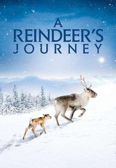A Reindeer's Journey 2018