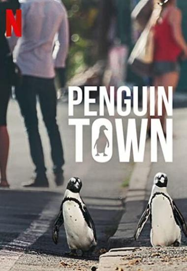Penguin Town 2021