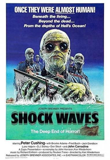 Shock Waves 1977
