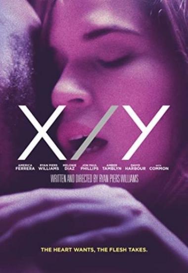 X/Y 2014