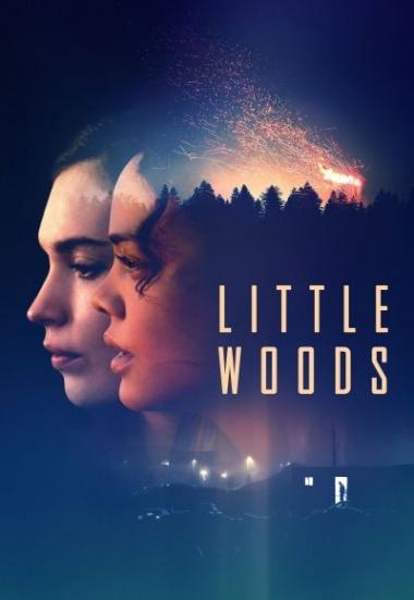Little Woods 2018