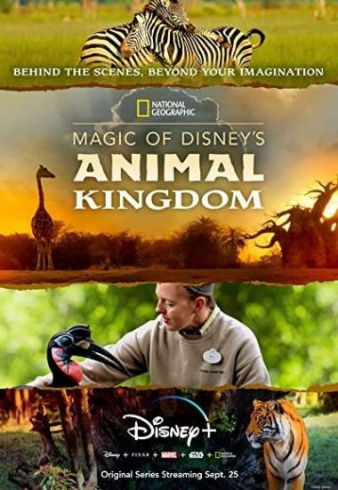 Magic of Disney's Animal Kingdom 2020